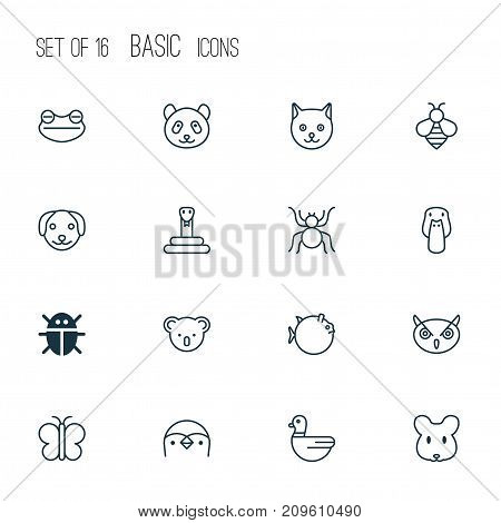 Zoology Icons Set. Collection Of Butterflyfish, Goose, Spider And Other Elements