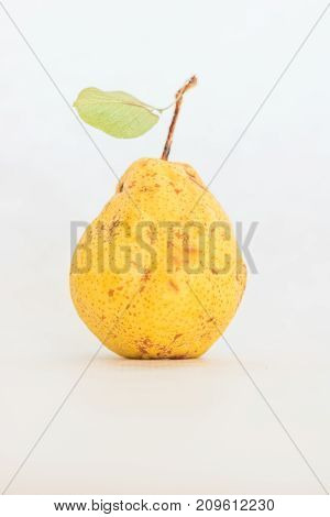 One ripe yellow skinned, with natural small brown spots that add realism and charm, slightly imperfect fresh organic beautiful studio shot of homegrown Bartlett pear with stem and green leaf isolated on white background, a delicious snack, healthy diet fo