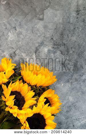 Yellow Sunflower Bouquet On Grey Background