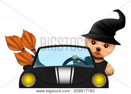 Funny cartoon animal witch posing with broom sit in black car. Halloween and Dead day concept. Realistic 3D illustration.