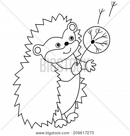 Vector black and white cute carton hedgehog with dandelion. Vector hedgehog Hedgehog vector illustration