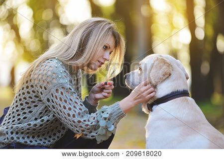 blonde playing with her labrador in autumn park