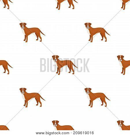 Labrador, single icon in cartoon style.Labrador, vector symbol stock illustration .