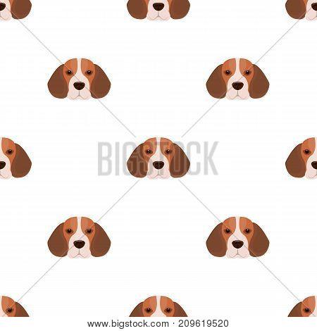 Breed dog beagle..Muzzle beagle single icon in cartoon style vector symbol stock illustration .