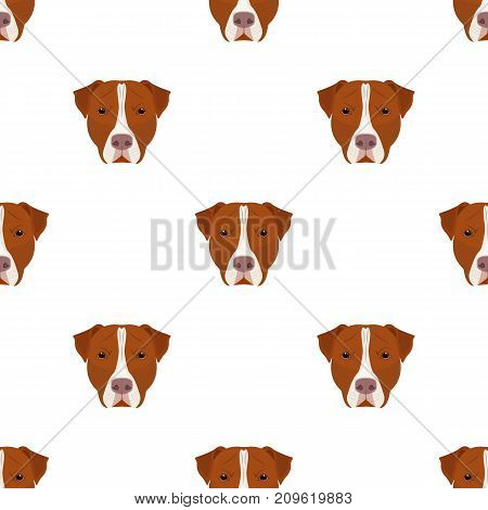 Dog breed, Stafford.Muzzle of Stafford single icon in cartoon style vector symbol stock illustration .
