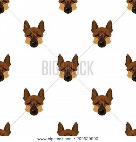 Dog breed, German Shepherd.Muzzle of the German Shepherd single icon in cartoon style vector symbol stock illustration .