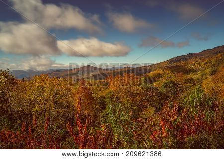 Autumn Colors Along the Blue Ridge Parkway in North Carolina