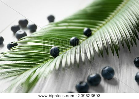 Fresh acai berries and palm leaf on wooden table, closeup