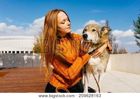 the lovely girl in the park walks with her dog. A girl is stroking her dog. Warm autumn day