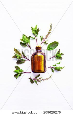Holy Basil Essential Oil in a Glass Bottle with Fresh Holy Basil white wooden background.
