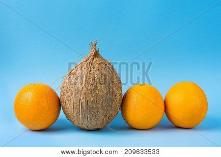 Row of Identical Oranges One Single Coconut on Blue Background. Individuality Personality Uniqueness Concept. Creative Inspirational Image. Copy Space