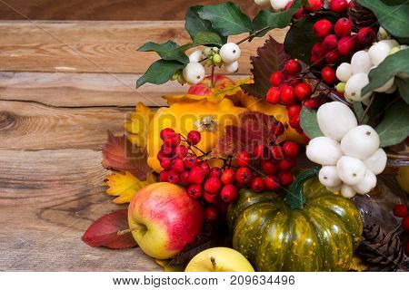 Fall Background With Snowberry, Rowan, Green And Yellow Squash