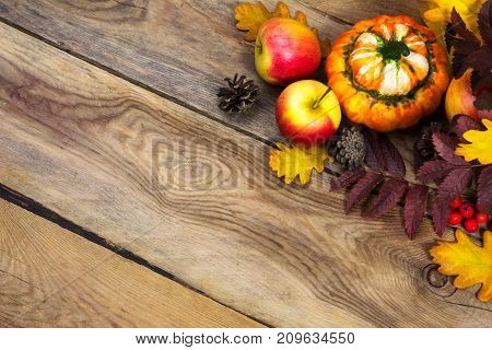 Thanksgiving Background With Cones, Apples, Pumpkin On Wooden Table, Copy Space