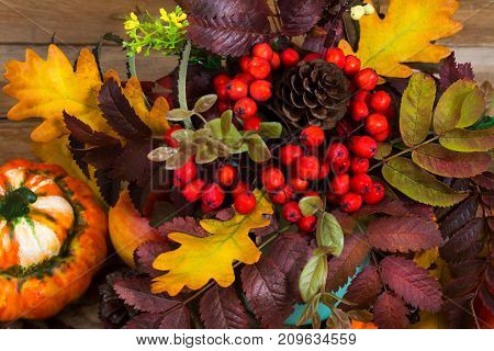 Thanksgiving Decoration With Pumpkin And Red Rowan Berries, Top View
