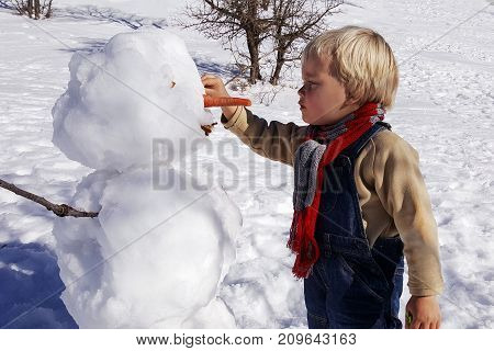 Little boy, blonde hair, playing in winter with snow, builds snowman. Wearing jeans and scarf. Hermon mountain, Israel