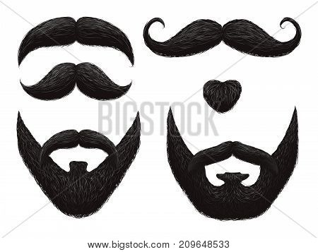 Male beards and mustache isolated on white background - barbershop templates. Vector illustration