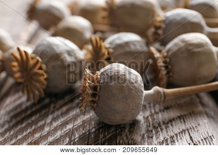 Dried poppy heads on wooden table, closeup
