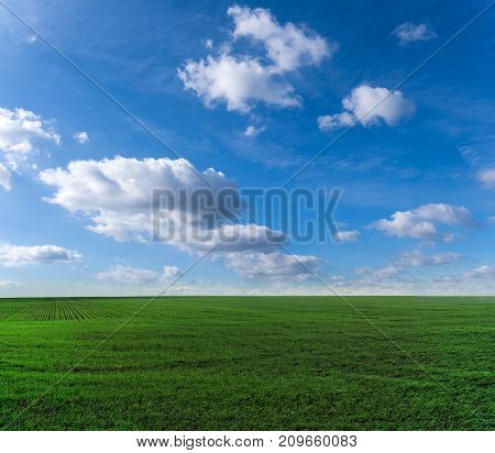 Green field and blue sky with beautiful clouds