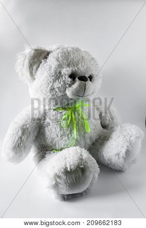Plush Bear In Classic Style
