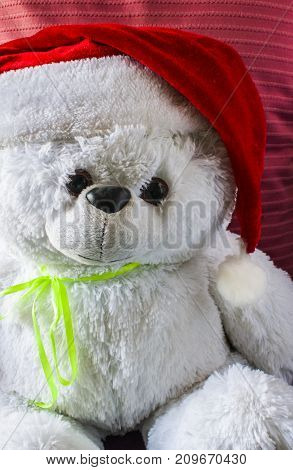 Toy Teddy Bear Wearing Santa Hat, On A Red Background.