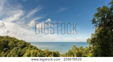 View Of The Sea Through The Trees