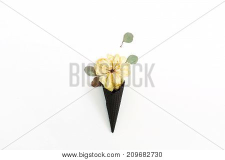 Black ice cream waffle cone with dry peony bud and eucalyptus leaf isolated on white background. Flat lay top view flower concept.