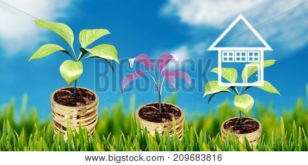 Grass growing outdoors against stocks and shares