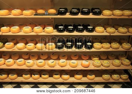 Traditional Dutch cheeses on display in a store