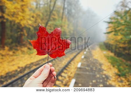 Autumn mood on the trip. Hand holding red maple leaf. Personal perspective on the rural railway station in fog.