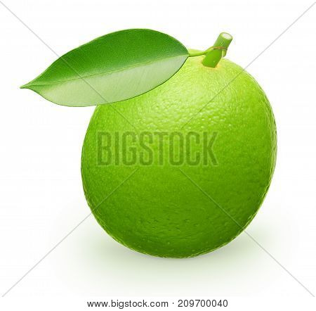Whole Fresh Lime Fruit With Green Leaf Isolated On White