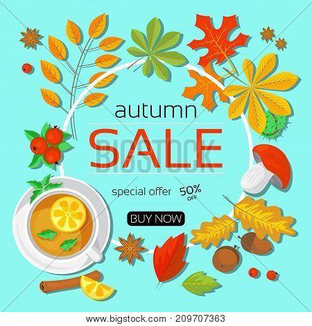 Banner of autumn sale on turquoise backround modern flat design vector illustration