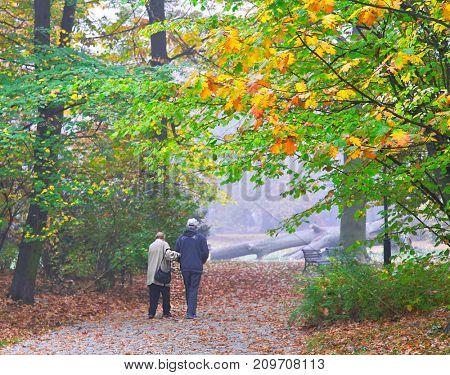 Senior couple enjoying walking in autumn Park