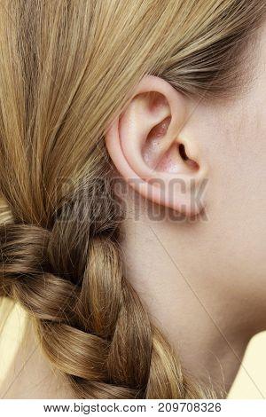 Close Up On Female Ear And Braid Hair