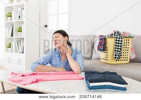 Pretty Elegant Housewife Doing Housekeeping