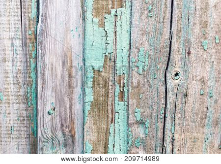 old wooden background . Photo of an abstract texture