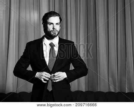 Bearded Man, Businessman In Suit And Red Tie Against Curtains