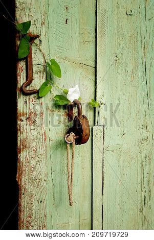 Old rusty metal iron padlock with key on a wood door