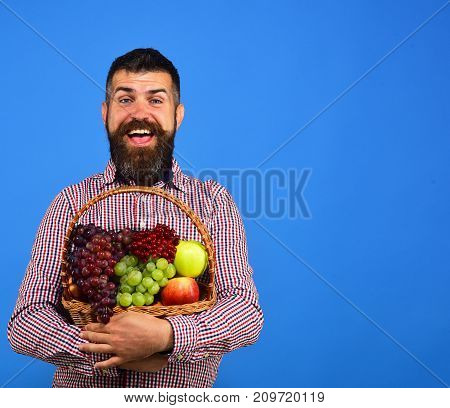 Farmer With Cheerful Face Presents Apples, Grapes And Cranberries