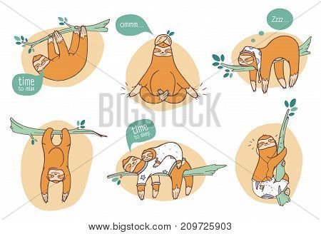 Collection of funny sloths in different postures. Lazy exotic animal sleeping, napping and relaxing on tropical tree branch. Cute cartoon character doing daily things. Colorful vector illustration