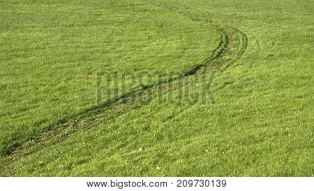 Tracks on a green grass lawn going through the Picture.