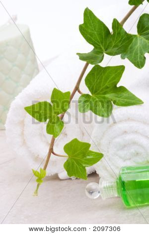 Ivy And Towels