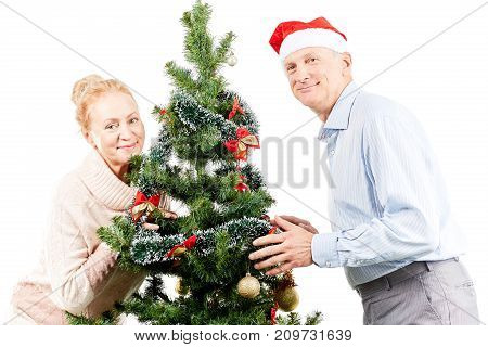 Portrait of senior couple posing near Christmas tree
