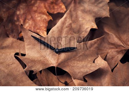 the hands of a clock on a dry leaf, depicting the end of the summer time