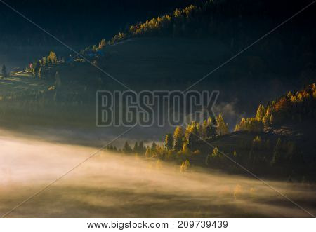 Rolling Hills In Autumn Morning Fog