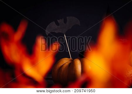 composition for decorating a house for halloween, lie yellow and orange pumpkins, drawings of black bats
