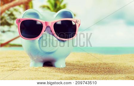 Sun bank beach sunglasses glasses pig piggy