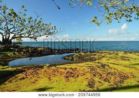 Hawaii is a paradise Big Island HAwaii USA.