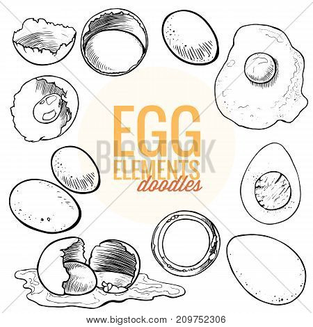 Various fresh raw organic eggs drew as broken , boiled, fried , halves , baked , cooked . Black ink vector doodles with isolated elements for package design or presentation