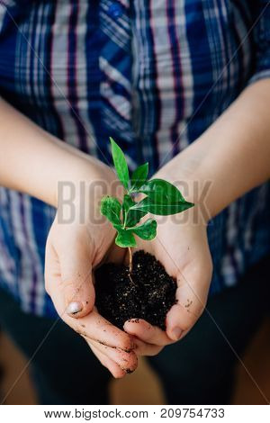 Young girl holding plant in hands - life and nature concept