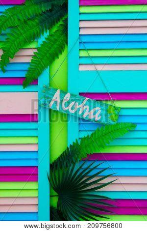 Hawaii vacation, resorts, fern palm tree leaf